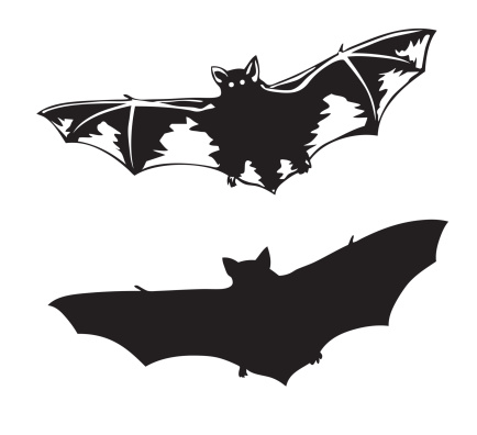 14577_thinkstockphotos-122569990 AWEA: Voluntary Mitigation Practices Will Reduce Impacts On Bats By 30%