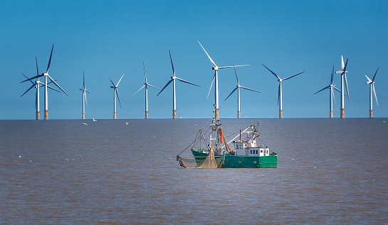 It's A Go: India Green-Lights Offshore Wind Policy