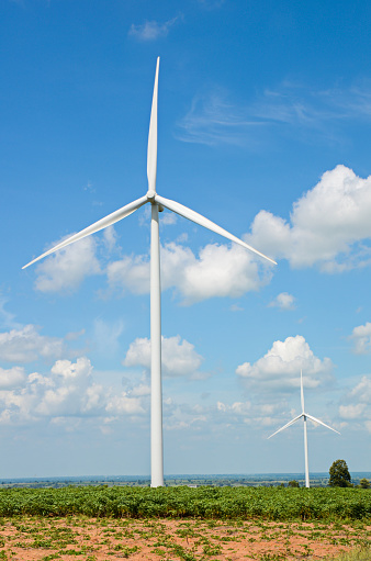 Corporations Sign Onto Renewable Energy Pledge