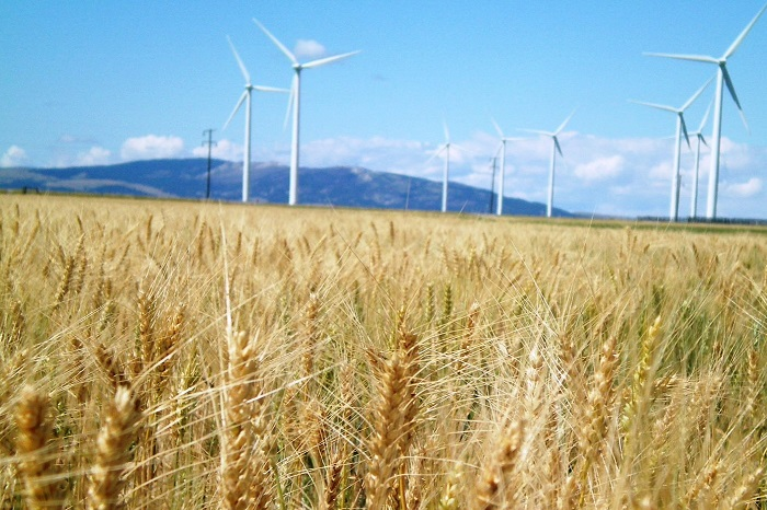 AWEA, WEF: Montana Poised For Big Savings From Wind Power