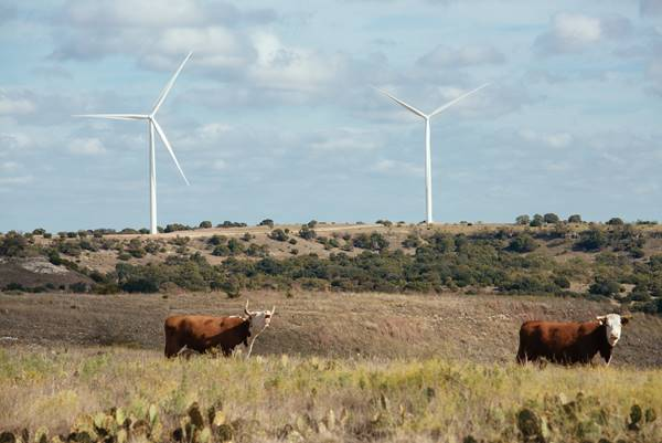 Pattern And Walmart Dedicate 200 MW Logan's Gap Wind Farm