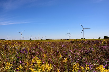 EDF RE's Great Western Wind Project To Power Google Data Center