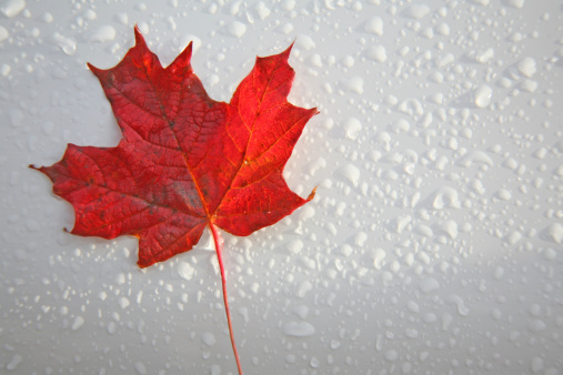 14972_thinkstockphotos-177138263 EREN RE, 3G Energy Collaborate For Renewables Development In Canada