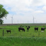 U.S. Takes No. 1 Spot In Wind Production; Iowa Reaches Milestone
