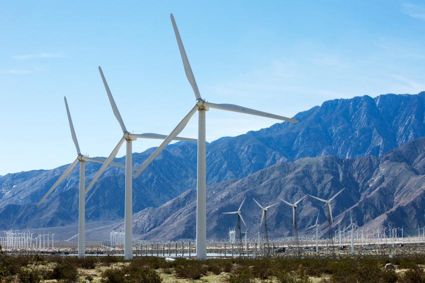 iStock_000058639066_Small Study: Not All Bat Species Are Affected By Wind Turbines In The Same Way