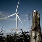 Vestas Notches German And Turkish Wind Turbine Orders