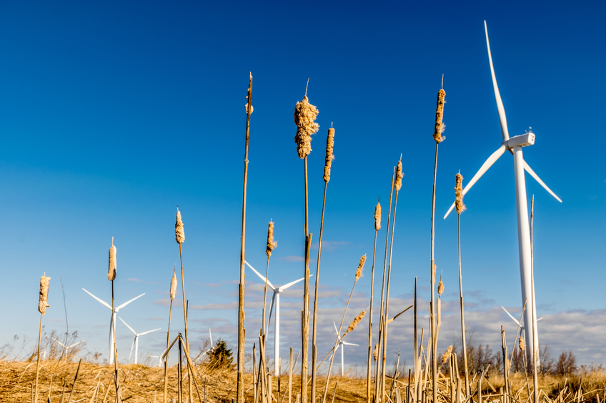 iStock_88291915_SMALL EDF EN Canada Sells A 15% Interest In 350 MW Wind Energy Asset