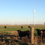 Oklahoma Utility Seeks 80 MW-Plus Wind Projects