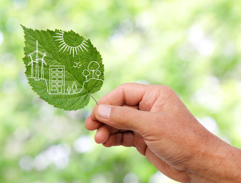 iStock_39758852_SMALL U.S. EPA Crowns This Year's 'Green Power' Leaders