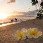 Hawaii Utilities Scope Out Land For Renewables Development