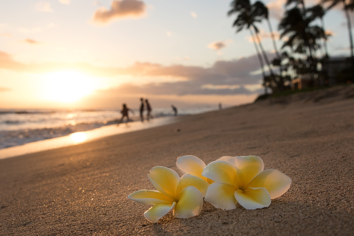 iStock-522781530 Hawaii Utilities Scope Out Land For Renewables Development