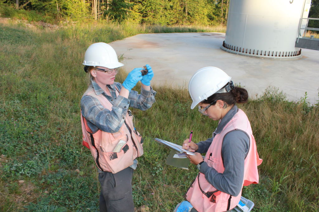 BCI-field-technicians-collecting-data-on-a-bat-carcass-CREDIT-Cris-Hein_Bat-conservation-International-1024x683 Study: Wind Turbines Posing Significant Threat To Hoary Bat Species
