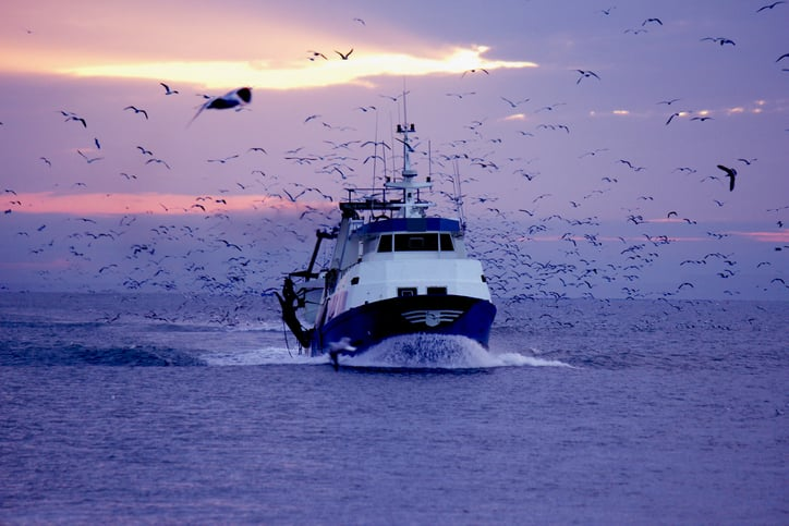 iStock-465449595 Fishing Industry Fights N.Y. Offshore Wind Area In Court