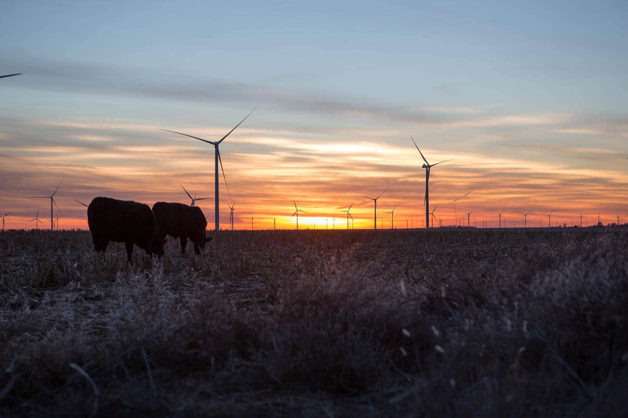cimarron-bend-wind-farm-kansas Enel's 400 MW Cimarron Bend Wind Farm Powers Up In Kansas