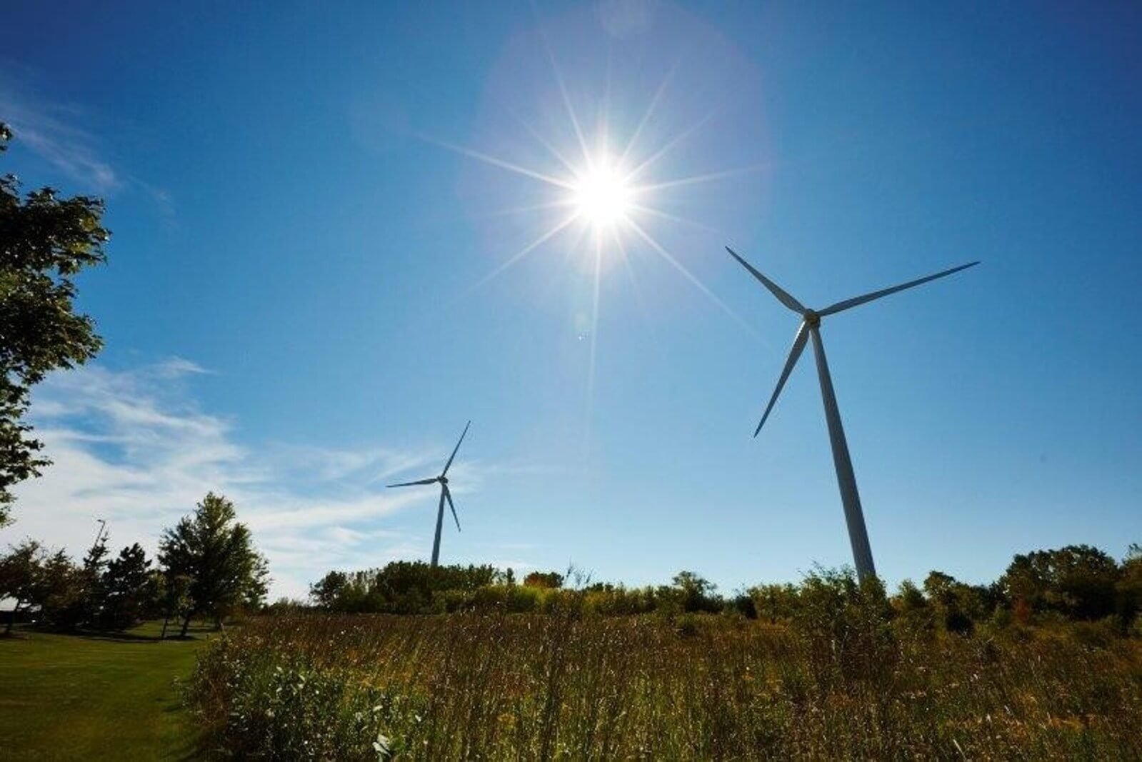 Wind_Energy Wind Energy Fully Powers Third SC Johnson Site