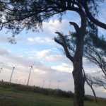 Five Community Relations Tactics For Wind Developers To Protect Their Bottom Line