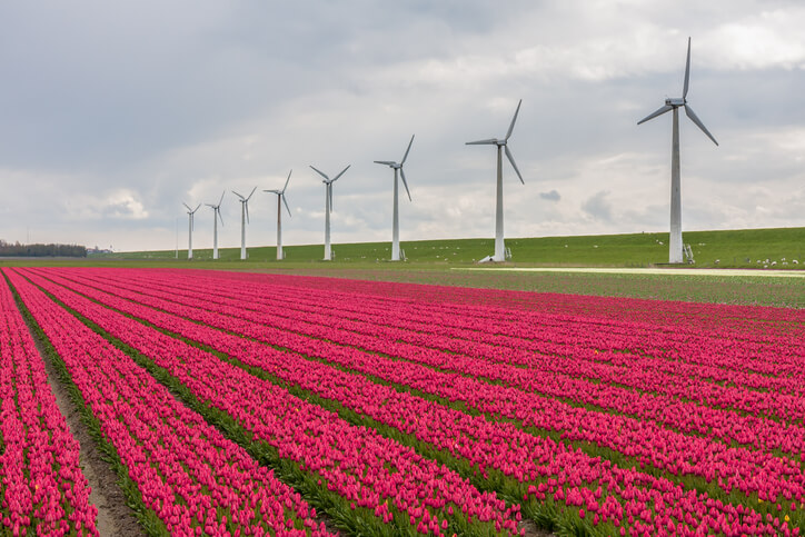 iStock-520507231 'Wind Income Is A Gift': Local Leaders Highlight Michigan Wind