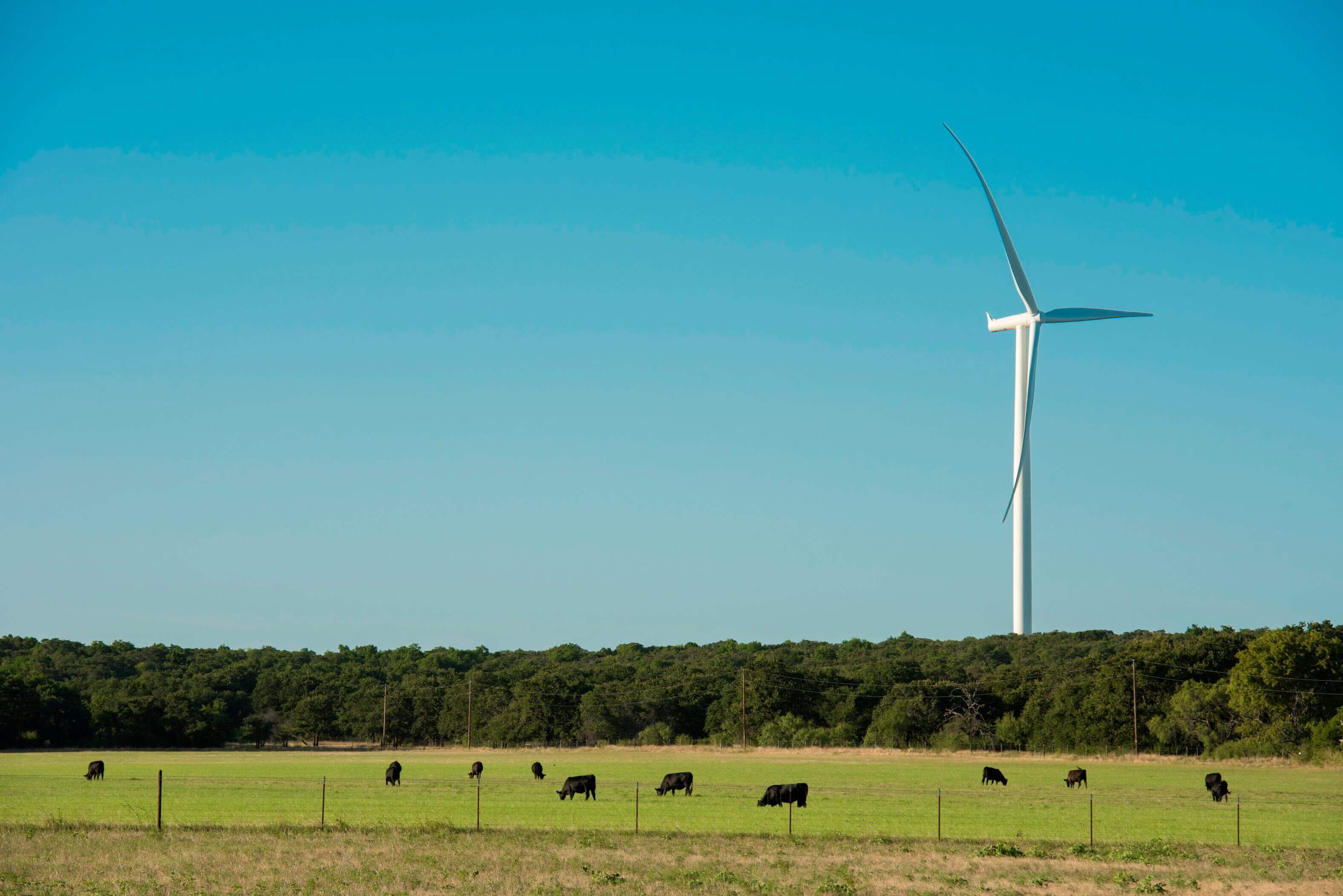 siemens-gamesa-1 Siemens Gamesa To Repower Texas Wind Duo For NextEra