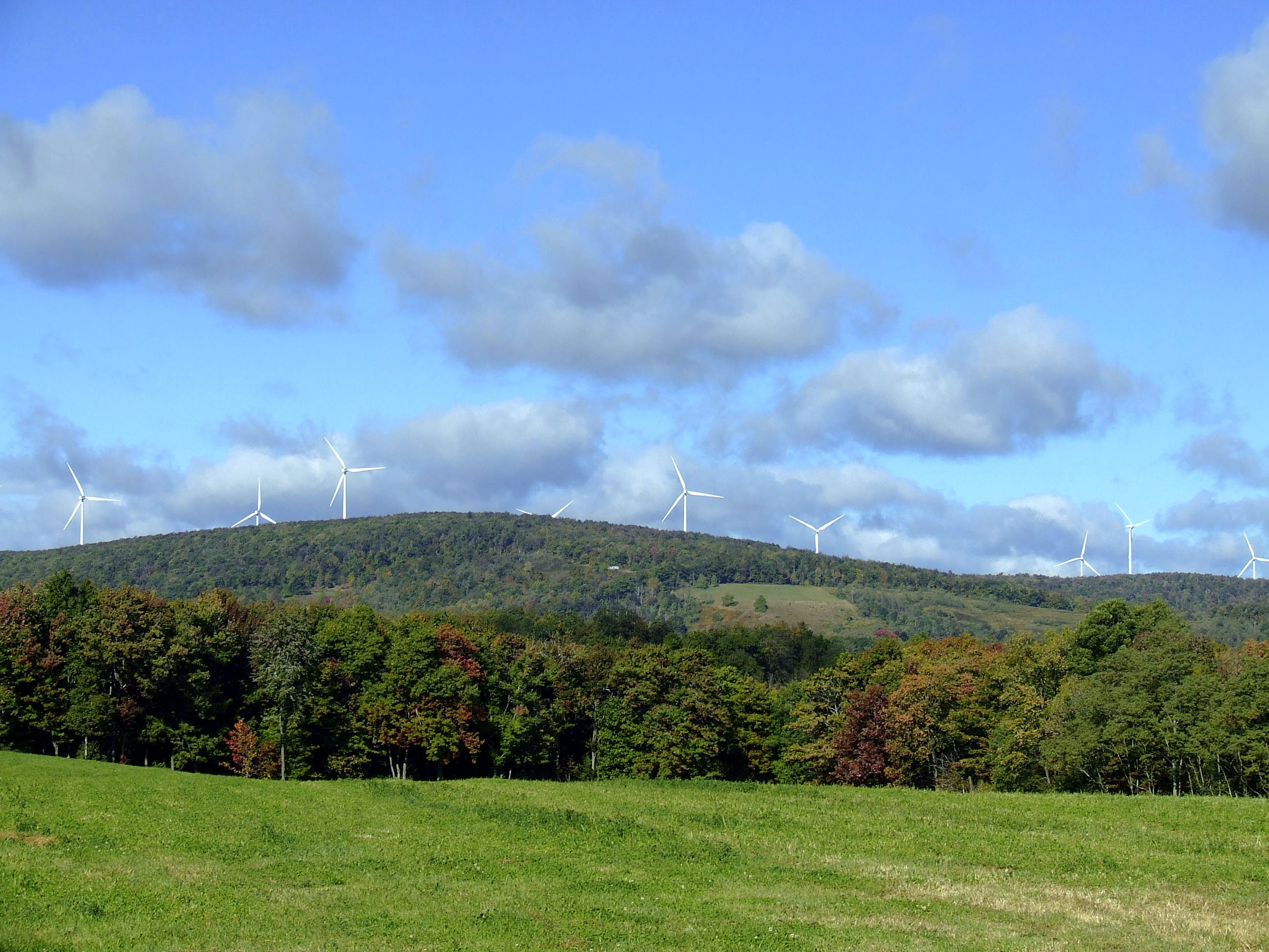 Gamesa-wind-farm Gamesa Supplying 52 MW To ScottishPower Renewables