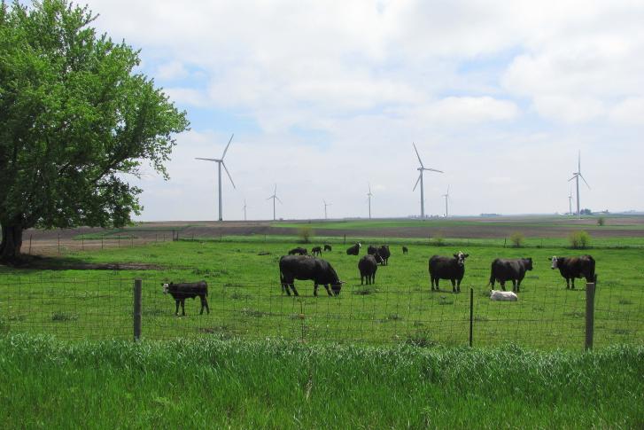 ThinkstockPhotos-505715748 U.S. Takes No. 1 Spot In Wind Production; Iowa Reaches Milestone