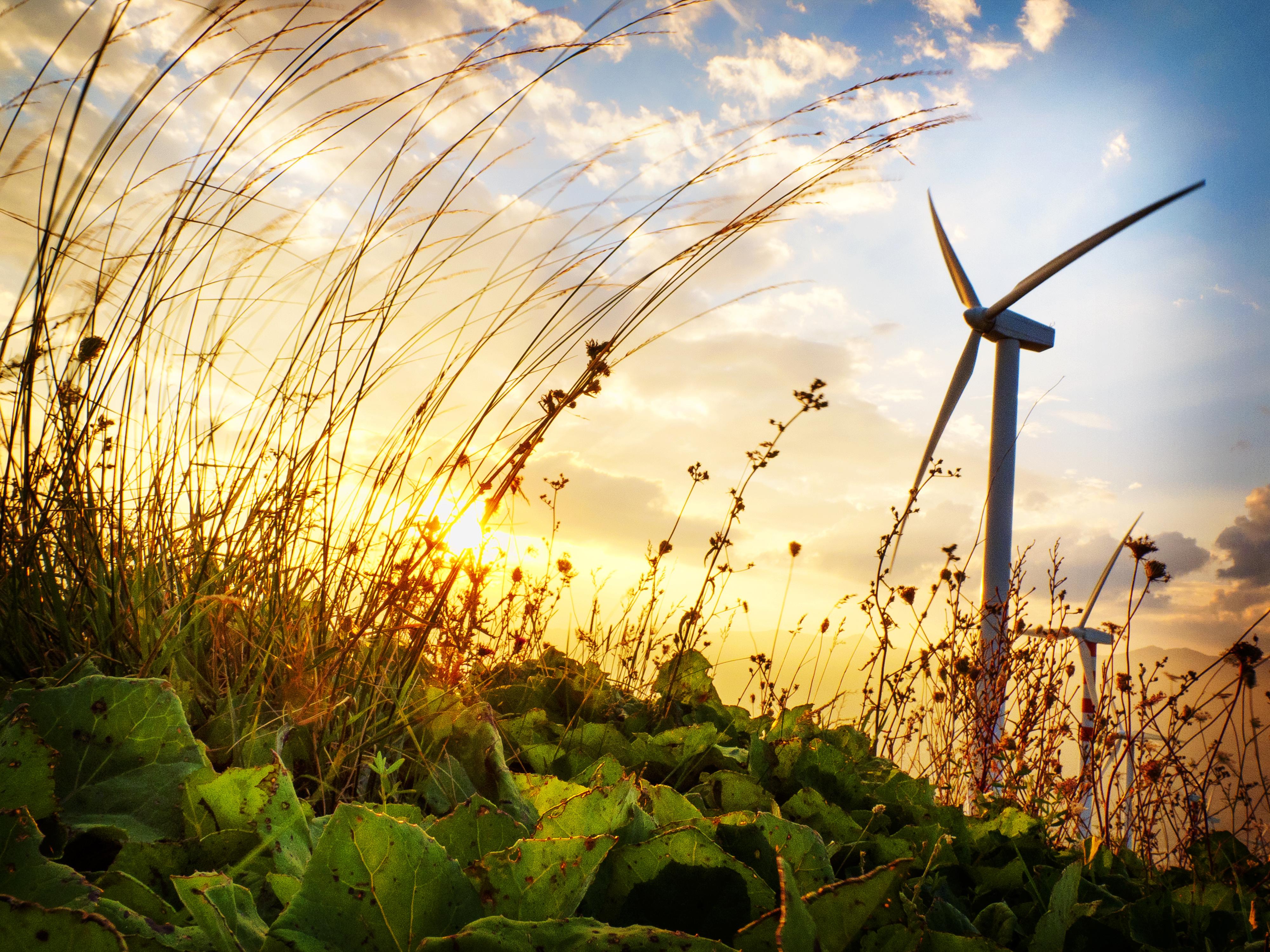 ... Financial Close Of B.C. Wind Portfolio :: North American Windpower