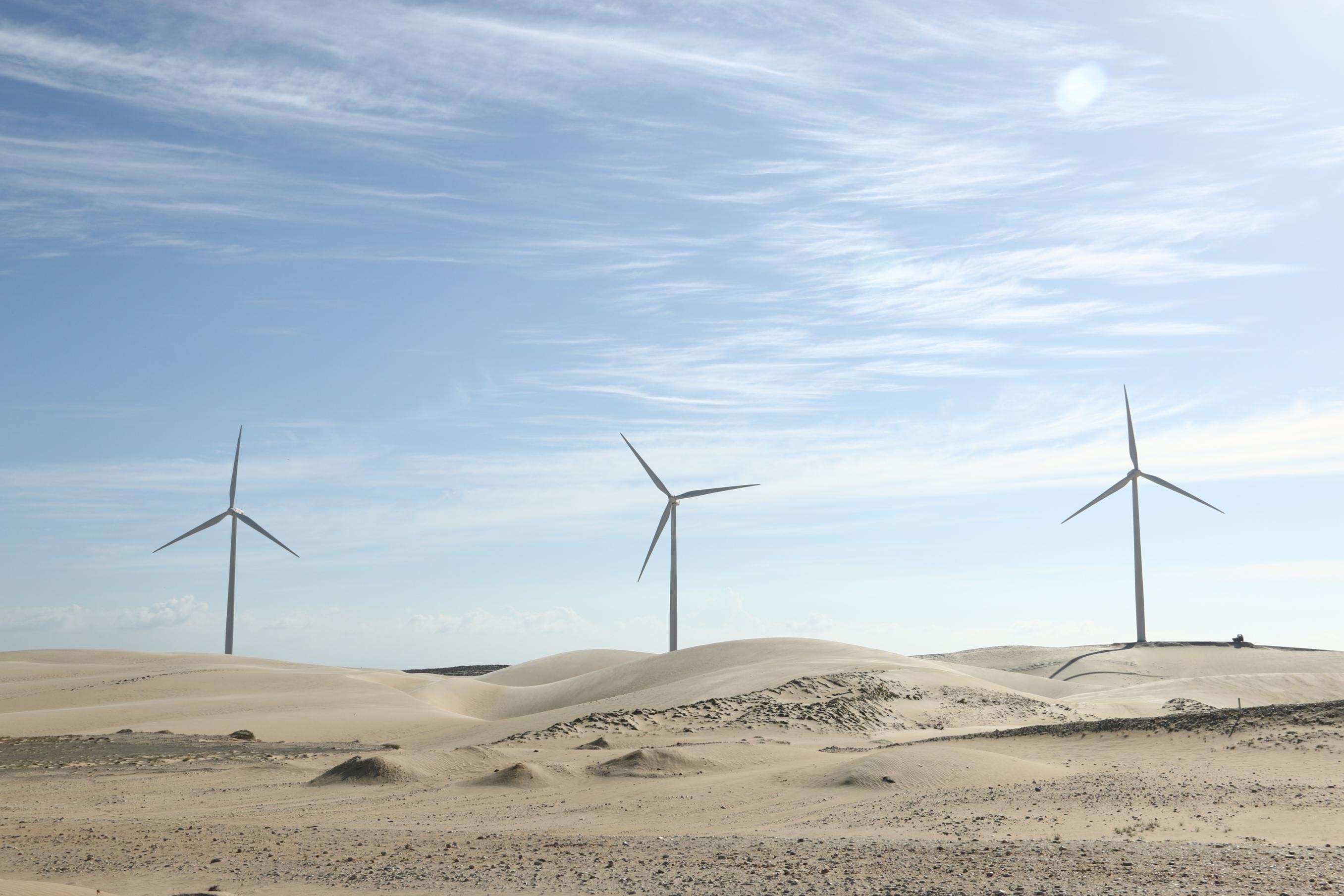 Wind-farm-Gamesa Gamesa Chosen To Build Two Wind Farms In Egypt