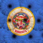 Minnesota Power Resource Plan Includes 100-300 MW Wind Procurement