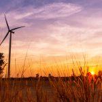 Vestas Nets 160 MW Wind Order From EDF Renewable Energy