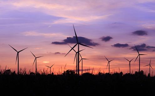 pink-wind Tri Global Energy Remains Hopeful For Renewables Under Trump