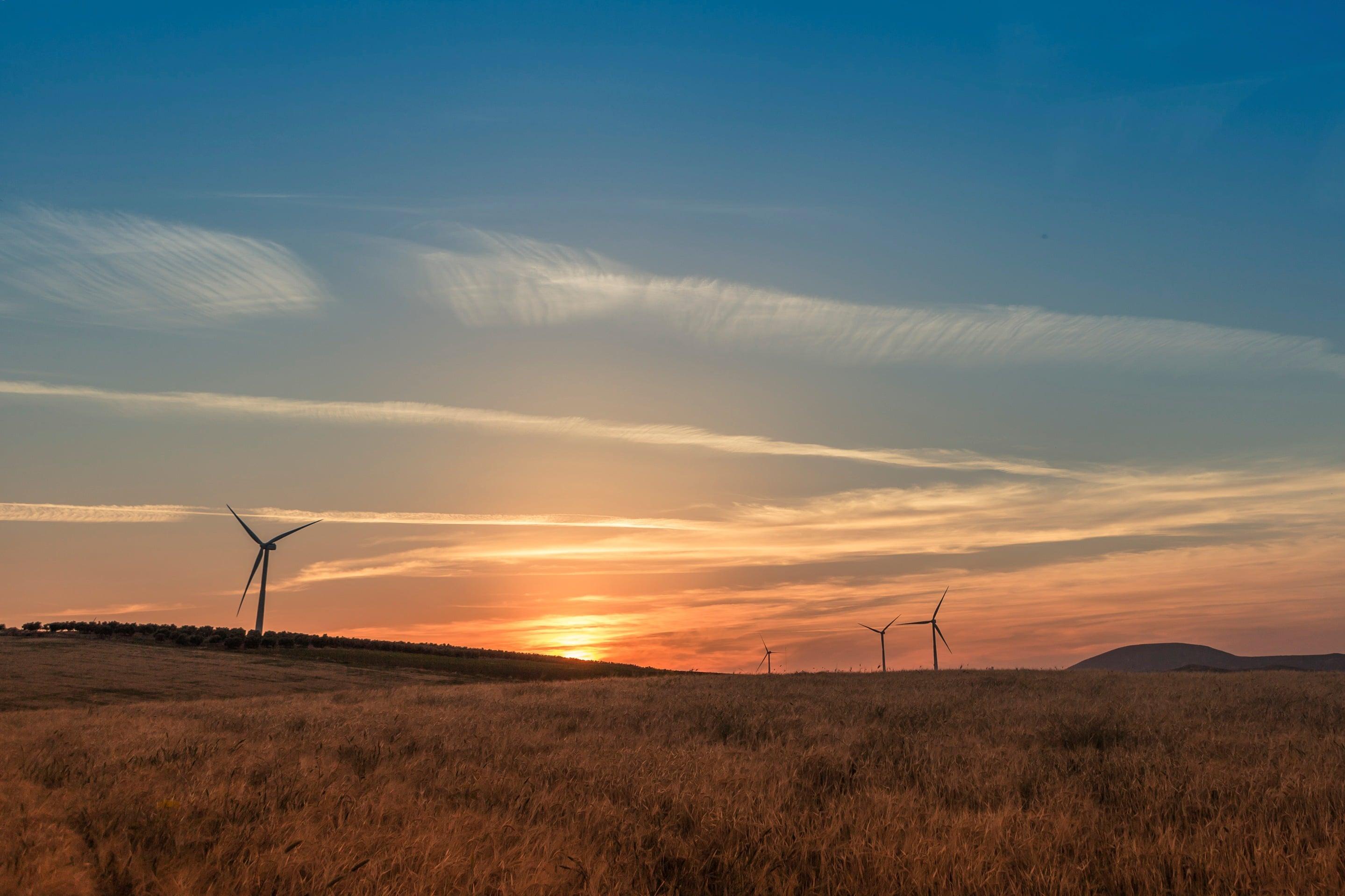 Gamesa-wind-farm Gamesa Wins Debut Order For New G126-2.625 MW Machine