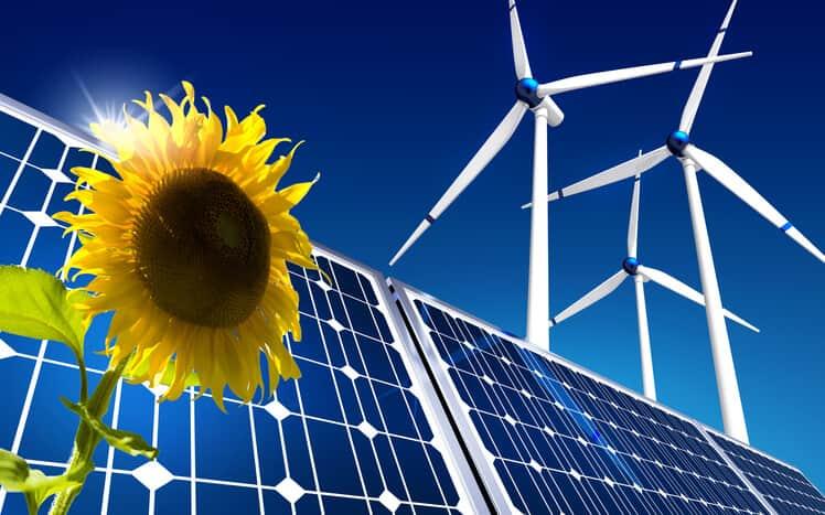 wind solar sunflower