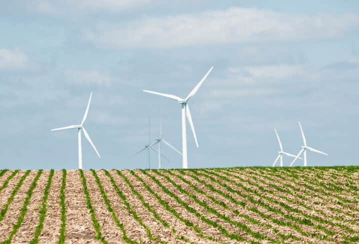 corn field wind turbines