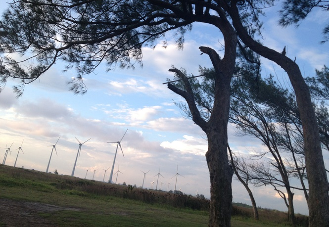 community wind farm