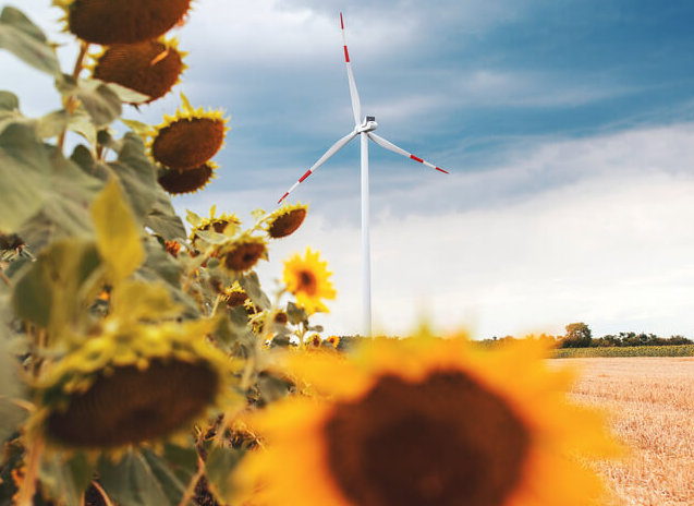 Shale-rich Oklahoma to host mega-wind farm